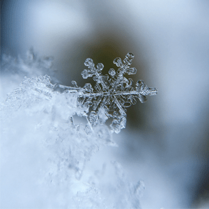 frost, ice